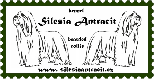male logo_silesiaantracit2Z